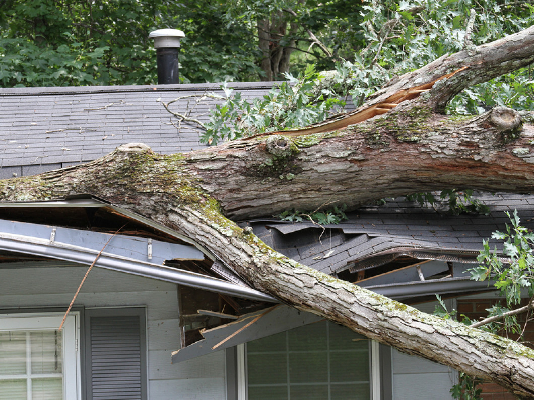 Take the Stress Out of Storm Damage Restoration